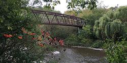 Erindale Park